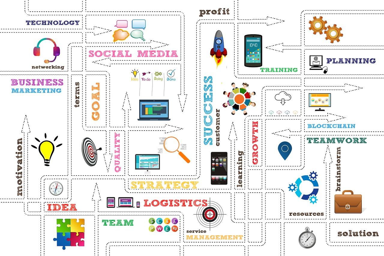 startup, business, organization